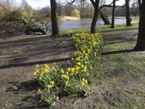 Renovatie van het Amsterdamse Oosterpark, een duurzame aanbesteding? ©ZaZ, 2016